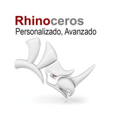 Curso de Rhino, Avanzado Personalizado - Persona adicional