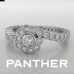 Panther - Licencia Eduación