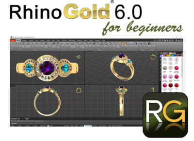 RhinoGold 6.0 for beginners